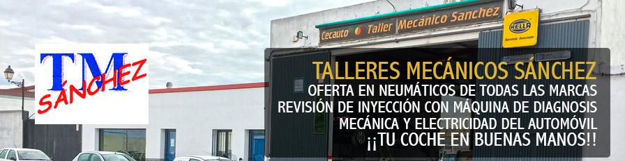 Talleres Mecánicos Sánchez