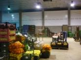 alimentacion,   verduras