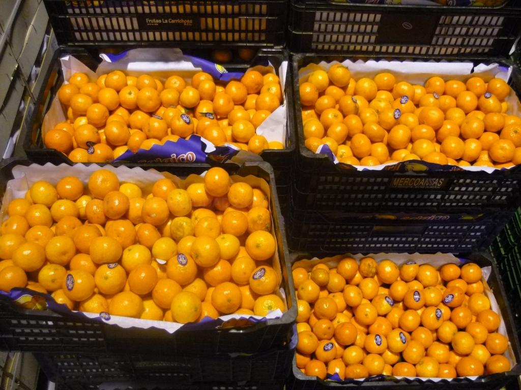 frutas en plasencia