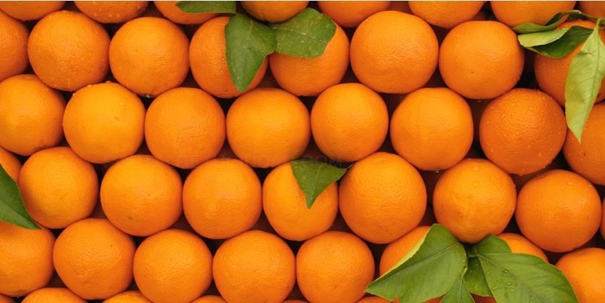 almacenes de frutas cáceres