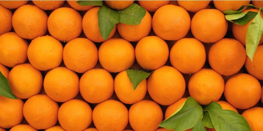almacenes de frutas en cáceres