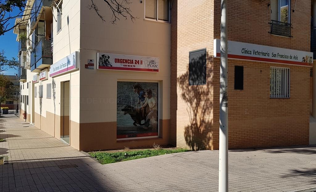 clínica veterinaria san francisco de asís cáceres