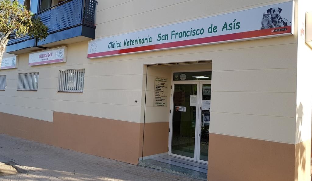 clínicas veterinarias para gatos cáceres