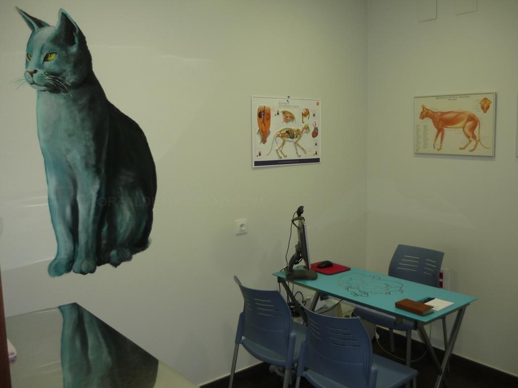 clínicas veterinarias cáceres