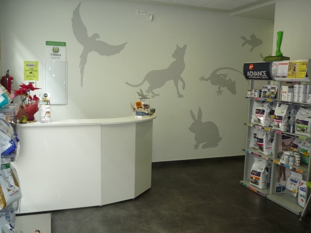 clínicas veterinarias en cáceres