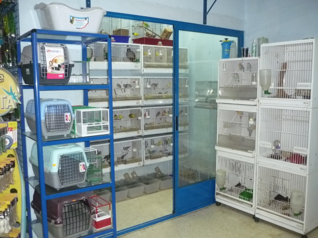 clínicas veterinarias para perros cáceres
