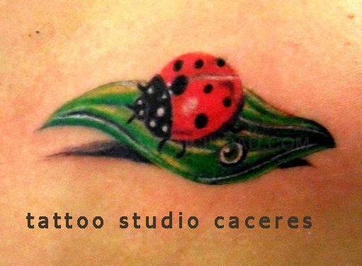 tatuajes en extremadura