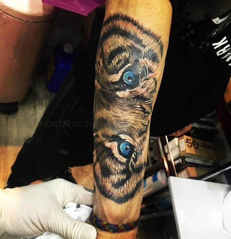estudios de tatuajes cáceres