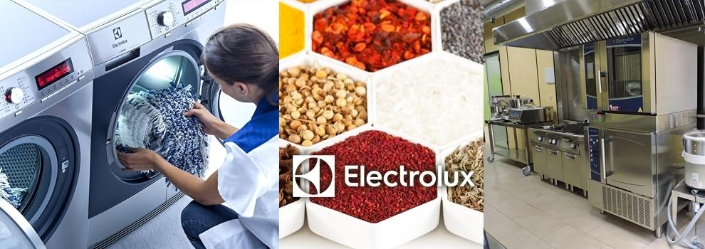 electrolux cáceres, reparación de electrodomésticos cáceres