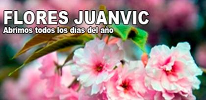 Flores Juanvic - Floristerías en Cáceres