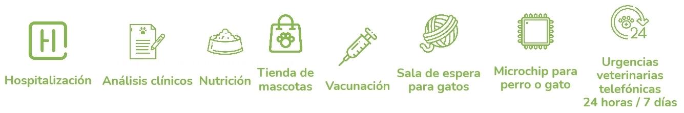 clínica veterinaria en Cáceres