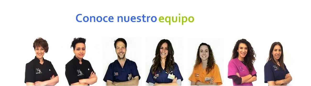 Clínica veterinaria en Cáceres, veterinarios urgencias en Cáceres