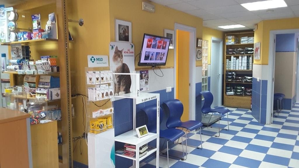 veterinarios de urgencia en Cáceres