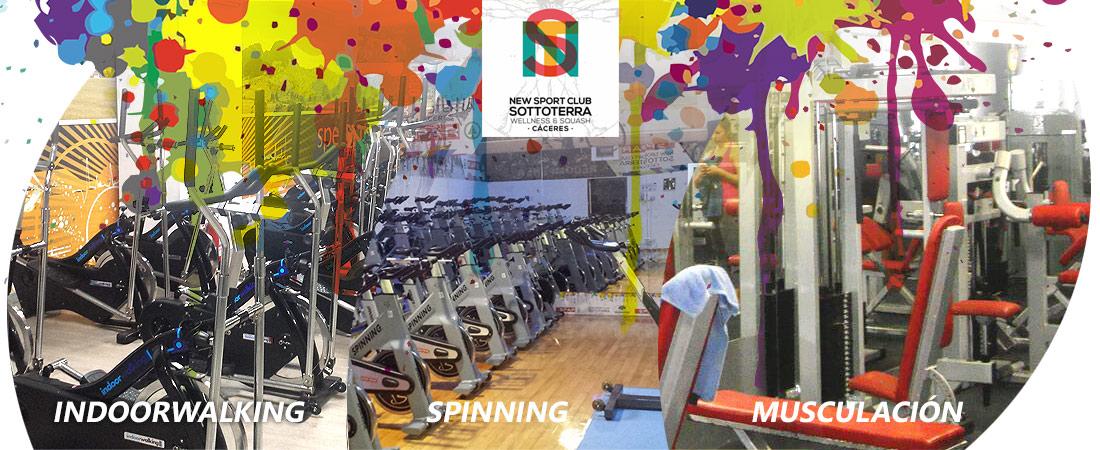 new, sport, club, sottoterra, wellness, squash