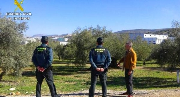 La Audiencia de Cáceres ordena que se investigue un posible timo a 84 olivareros