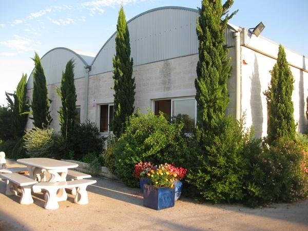 Alziplant - Centro de Jardineria Valencia