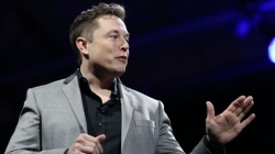 Neuralink, la locura de Musk para conectar cerebro y ordenadores