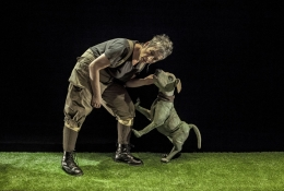 Teatro infantil: Historia de una semilla