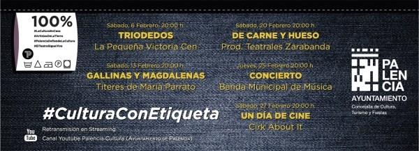 Cultura online en Palencia