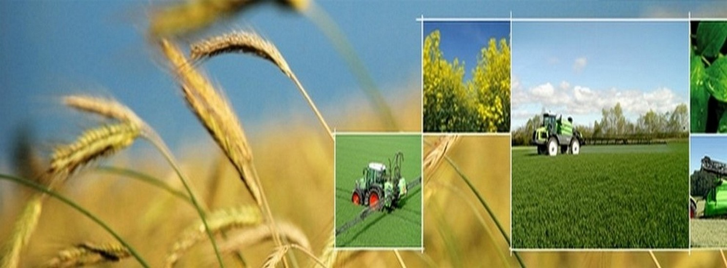 herbicidas en palencia, semillas en palencia, abonos en palencia