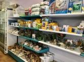 tienda especializada en alimentos para animales en palencia, animales en palencia