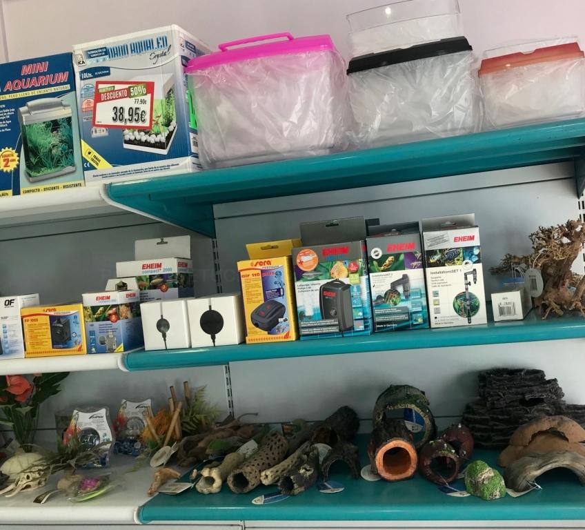 tienda de animales en palencia, peces en palencia