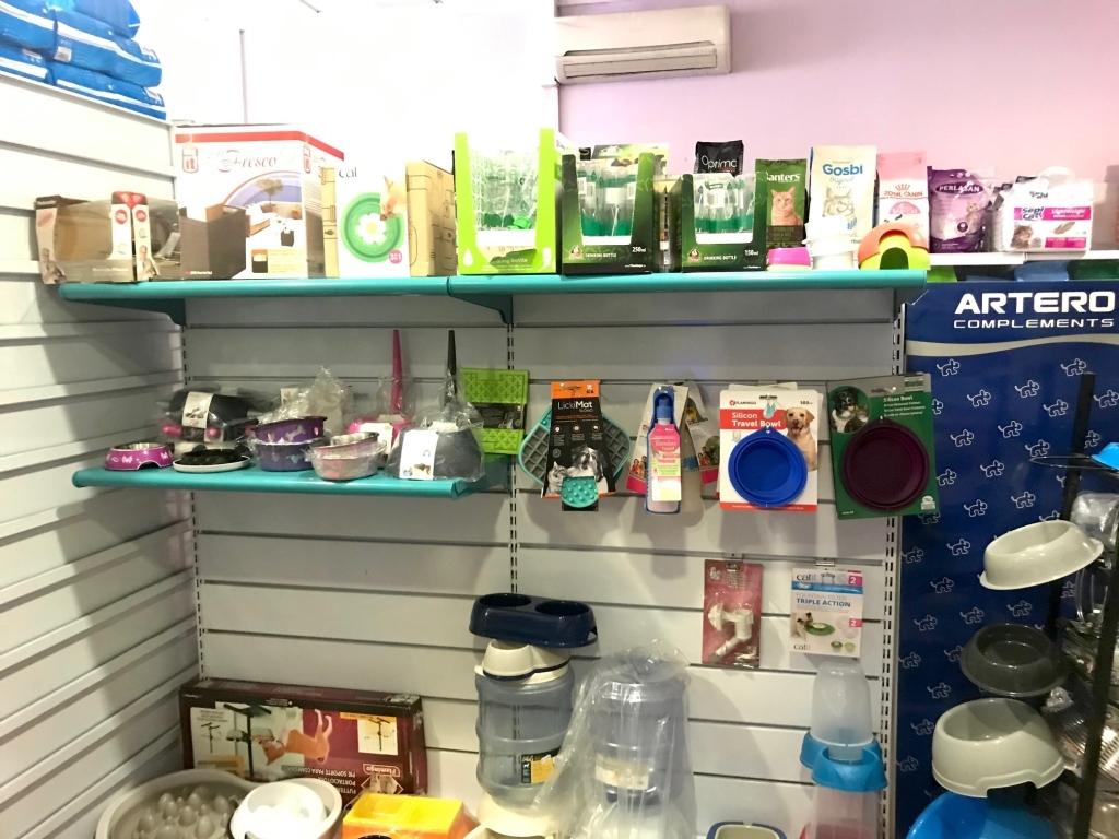 servicio de peluqueria caninda, peluqueria canina, servicio de peluqueria canina en palencia