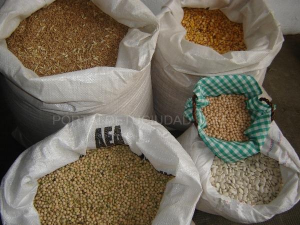 semillas r-1 en palencia semillas r-2 en palencia, semillas r1 en palencia, semillas r2 en palencia