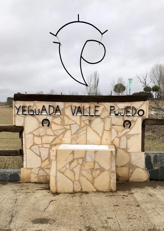 yeguada en palencia, yeguada valle de pujedo, valle pujedo en palencia