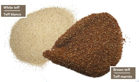 productos de teff españa, productos teff spain,
