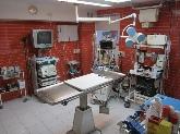 hospital de perros palencia, hospital de gatos palencia