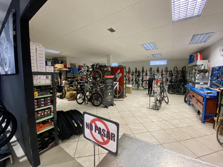 puesta a punto bicicletas en palencia