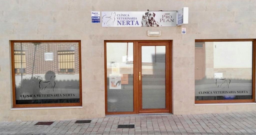 nerta veterinarios, clinica veterinaria villamuriel de cerrato