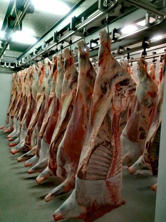 Mayorista de carne en palencia