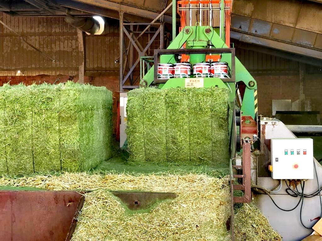 deshidratadora de alfalfa