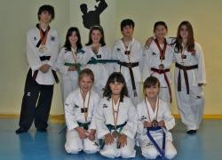 Campeonato de Técnica, Free Style y Exhibición de CYL de Taekwondo