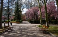 La Comisión de Contratación dictaminará hoy sobre el pliego de condiciones para el concurso del Parque de Los Jardinillos