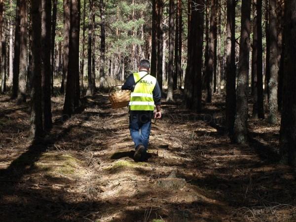 Ocho asociaciones micológicas de la provincia reciben ayudas por importe de 8.000 euros