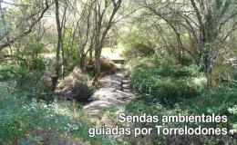SENDAS AMBIENTALES GUIADAS