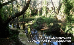 SENDAS AMBIENTALES GUIADAS POR TORRELODONES DURANTE EL VERANO