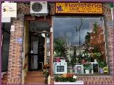 floristerías en torrelodones,  floristería en torrelodones,  floristerías en la sierra de madrid,  flor