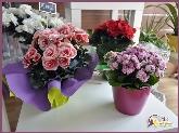 floristería en torrelodones,  floristerías en la sierra de madrid, decoración de eventos,  decoración de iglesias
