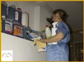 limpieza de garajes,  desinfección de casas en madrid