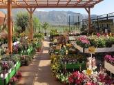 diseño de jardines en collado villalba,  diseño de jardine