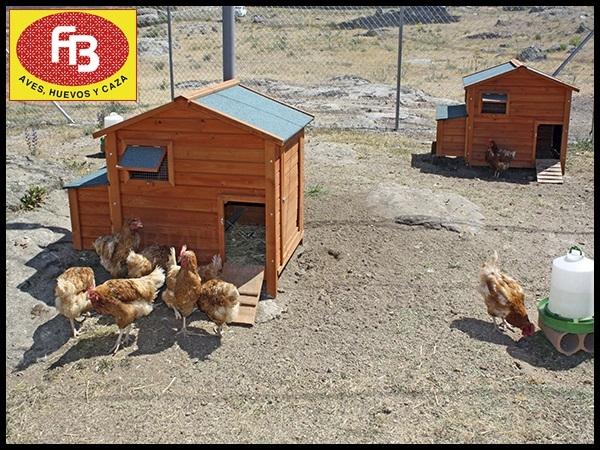 Venta al por mayor de pollos en la sierra noroeste, Venta al por mayor de pollos en cerceda