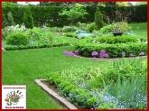 servicios de jardineria en collado villalba, servicios de jardineria en collado villalba