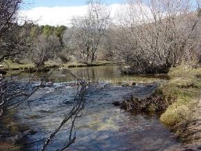 Nacimiento del Manzanares (Pedriza)