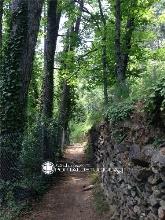 Parque Miguel del Campo (San Lorenzo de El Escorial)