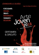 LOS JOVENES ARTISTAS DE GALAPAGAR TIENEN UNA NUEVA CITA CON EL CIRCUITO DE ARTE JOVEN