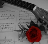 Estudios musicales, Instrumentos musicales